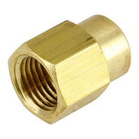 Brass Reducing Socket (BSP)