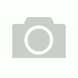 Brass Female Bulkhead