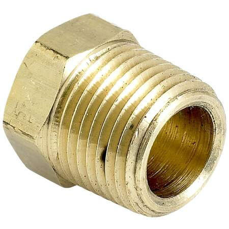 BRASS PLUG     NPT (Hollow)
