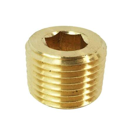 Brass Socket Head Plug     NPT