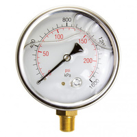 Pressure Gauges (Liquid Filled 100mm)