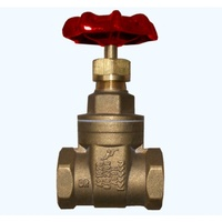 Brass Gate Valves