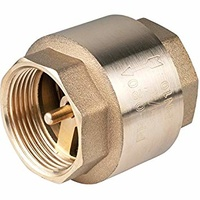 Brass Europa Check Valve (Heavy Duty)