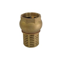 Brass Foot Valves