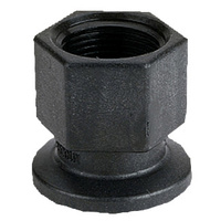 Banjo Flange Fitting       M100050FPT